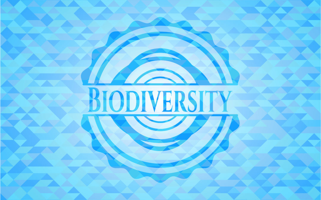 The French biodiversity agency: an initiative in support of the environment
