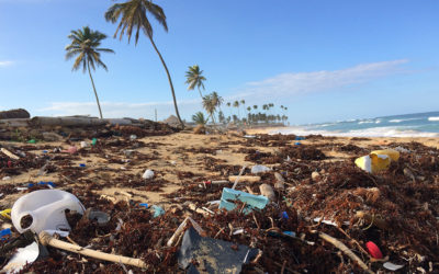 [Video] Ocean Plastic Pollution: the solutions are on land, not at sea