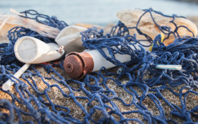 Plastic pollution in the oceans – what answers do we have?