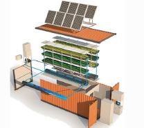 Smart Plant Cultivation System
