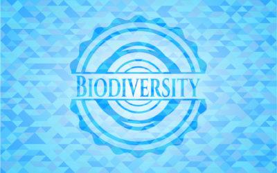 l'Agence française pour la biodiversité : une initiative en faveur de l'environnement