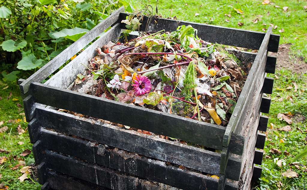 Les bio-déchets : un des grands enjeux de ces prochaines années