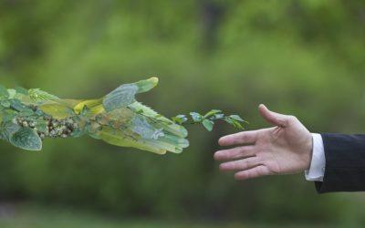 Protection de l'environnement : quels outils pour suivre la réglementation ?