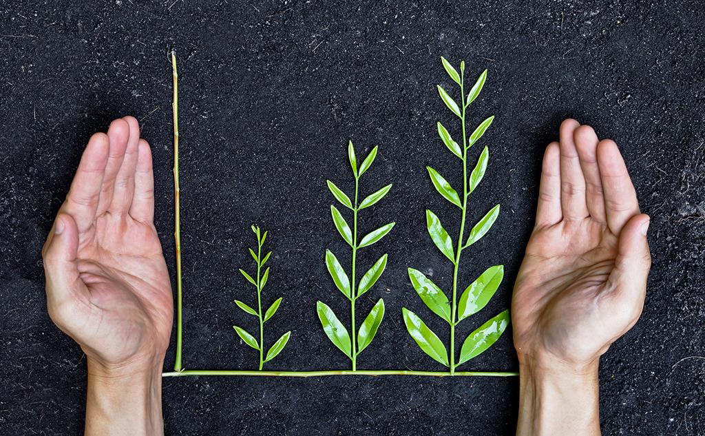 Taxonomie verte : de quoi parle-t-on exactement ?